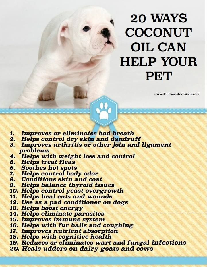 Natural Herbal Sedative For Cats And Dogs